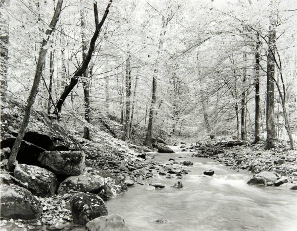 Swift Creek - Upstream (Virginia) by Bruce Zander | ArtworkNetwork.com