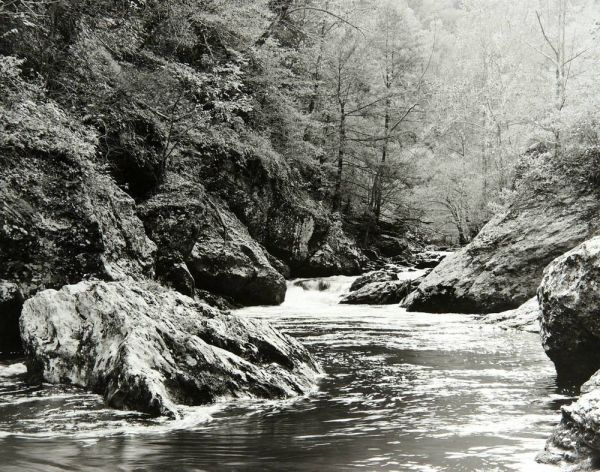Little River (Great Smoky Mountains) by Bruce Zander | ArtworkNetwork.com