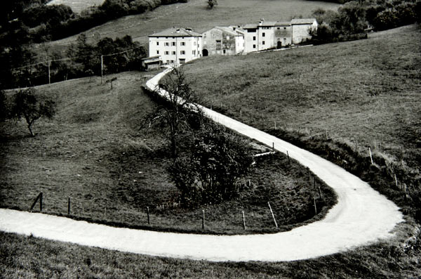 Farm Road (Italy) by Bruce Zander | ArtworkNetwork.com