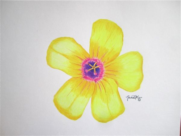 Yellow 1 by Nadia Lee | ArtworkNetwork.com