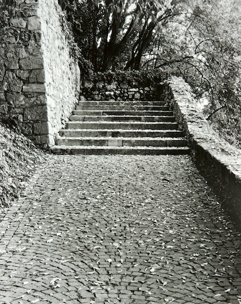 Stairs (Asolo Italy) by Bruce Zander | ArtworkNetwork.com