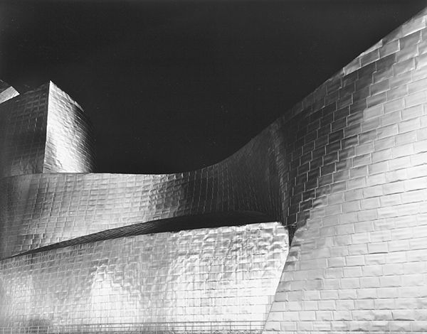 Guggenheim Night Form (Bilbao) by Bruce Zander | ArtworkNetwork.com